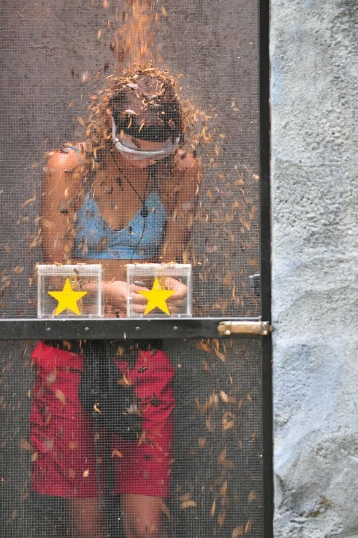 """<p>In """"Schloss mit lustig"""" muss Gisele sich nacheinander in fünf riesengroße Felsbrocken einschließen lassen.</p> Foto: TV Now / Stefan Menne"""