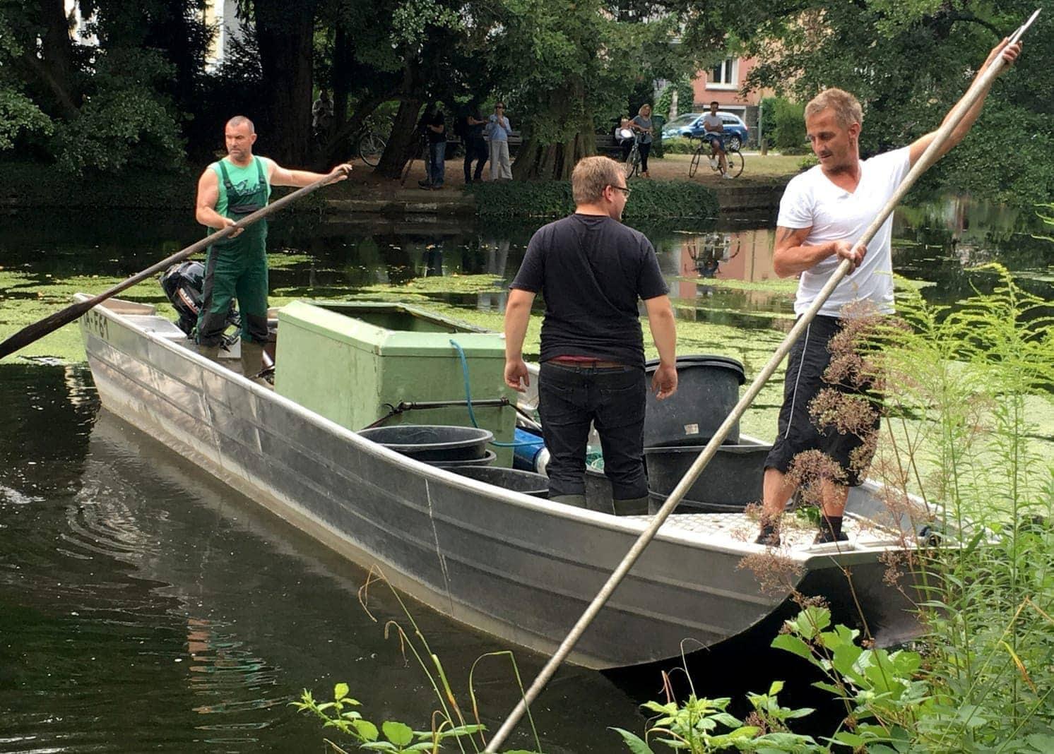 sehr gefräßige Wels aus einem Teich in Offenbach ist einem Fischer bei einer groß angelegten Suchaktion durchs Netz gerutscht.</p> Foto: dpa