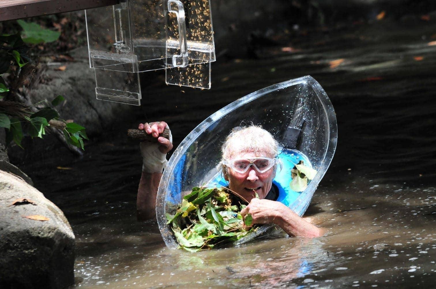 <p>Am zwölften Tag im Dschungel wählten die Camper Peter Orloff in die Prüfung