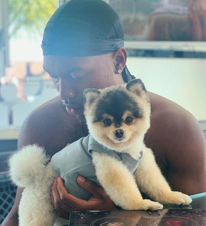 Daniel Sturridge und sein Hund Lucci