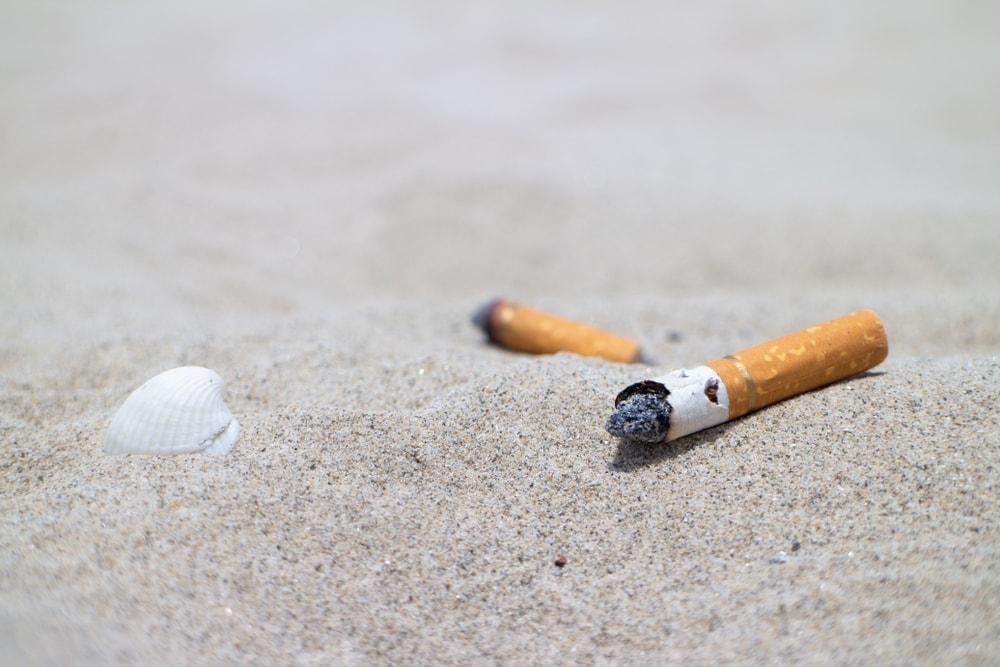 Zigaretten Kippen Strand Sand Muschel