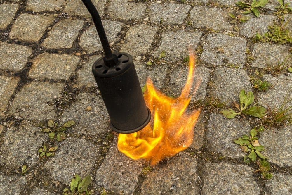 Unkrautbrenner Gasbrenner Unkraut Pflastersteine