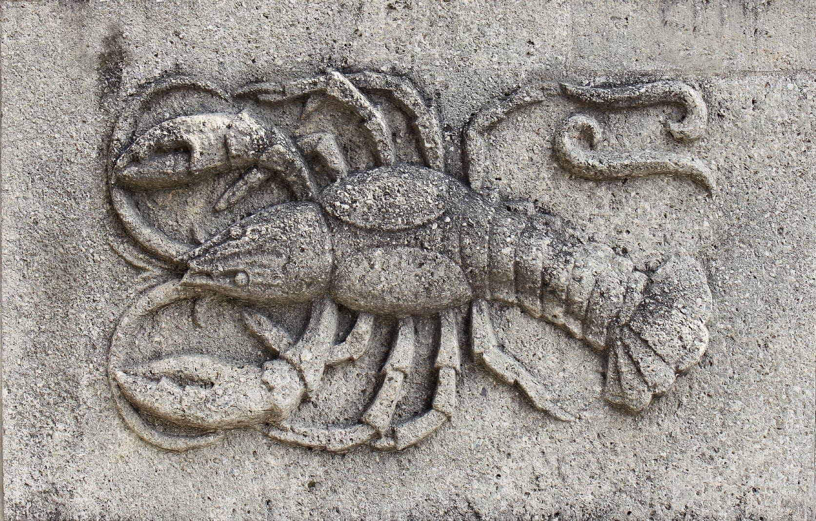Frau und mann skorpion krebs Skorpion