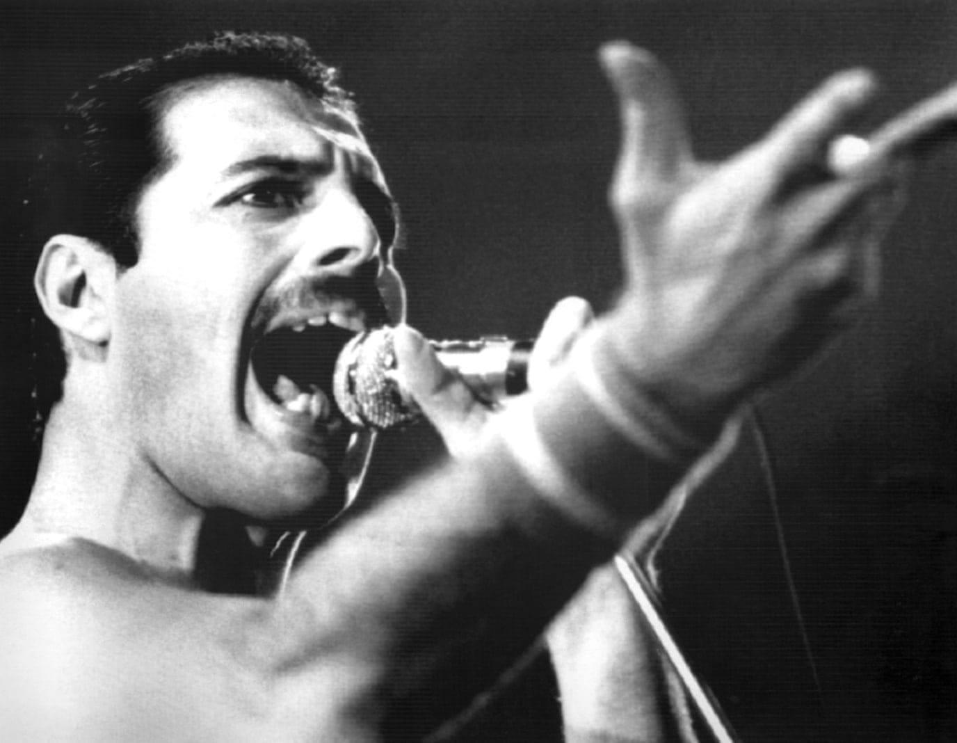 Freddie Mercury BS