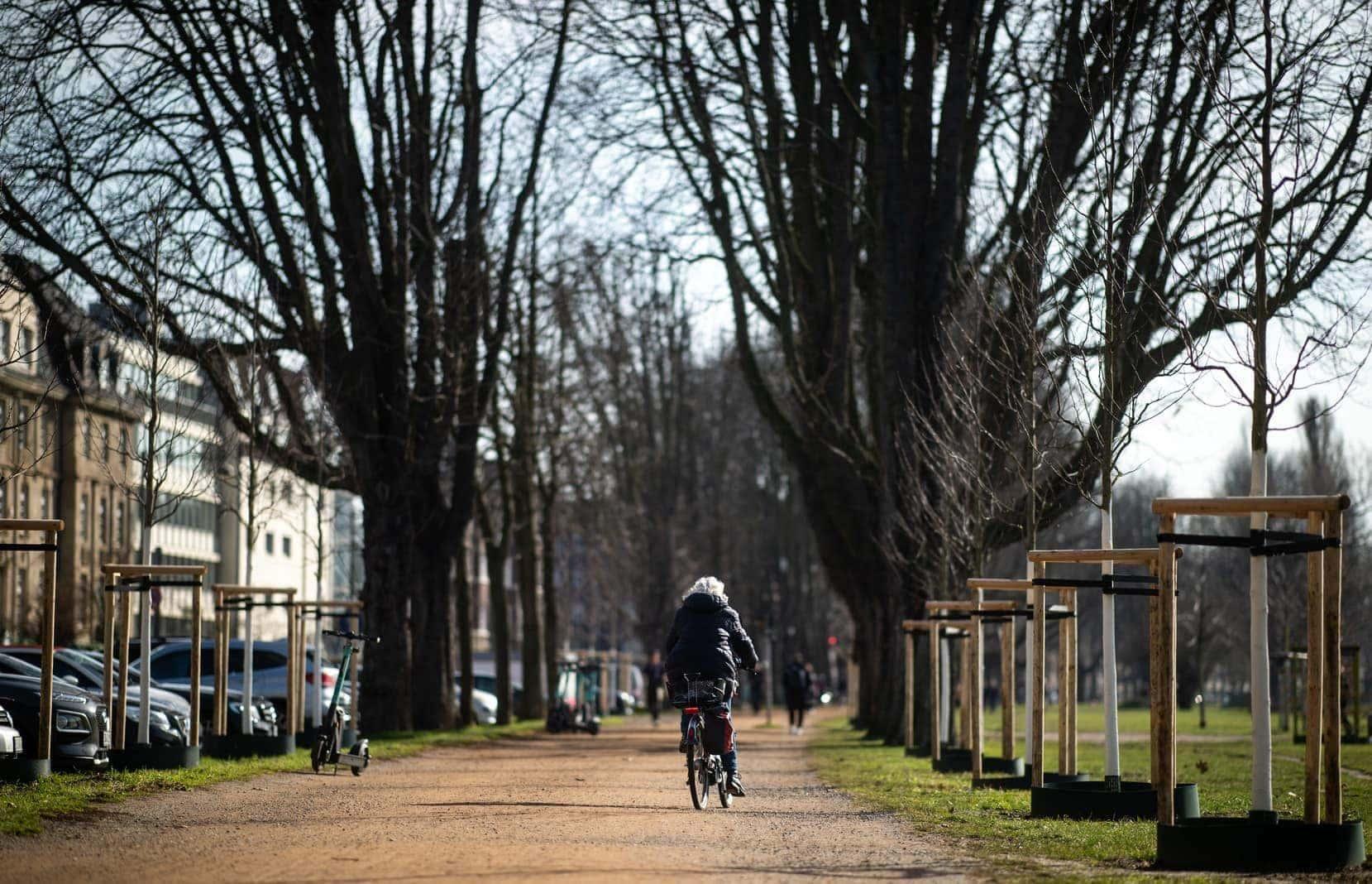 Frühling Düsseldorf