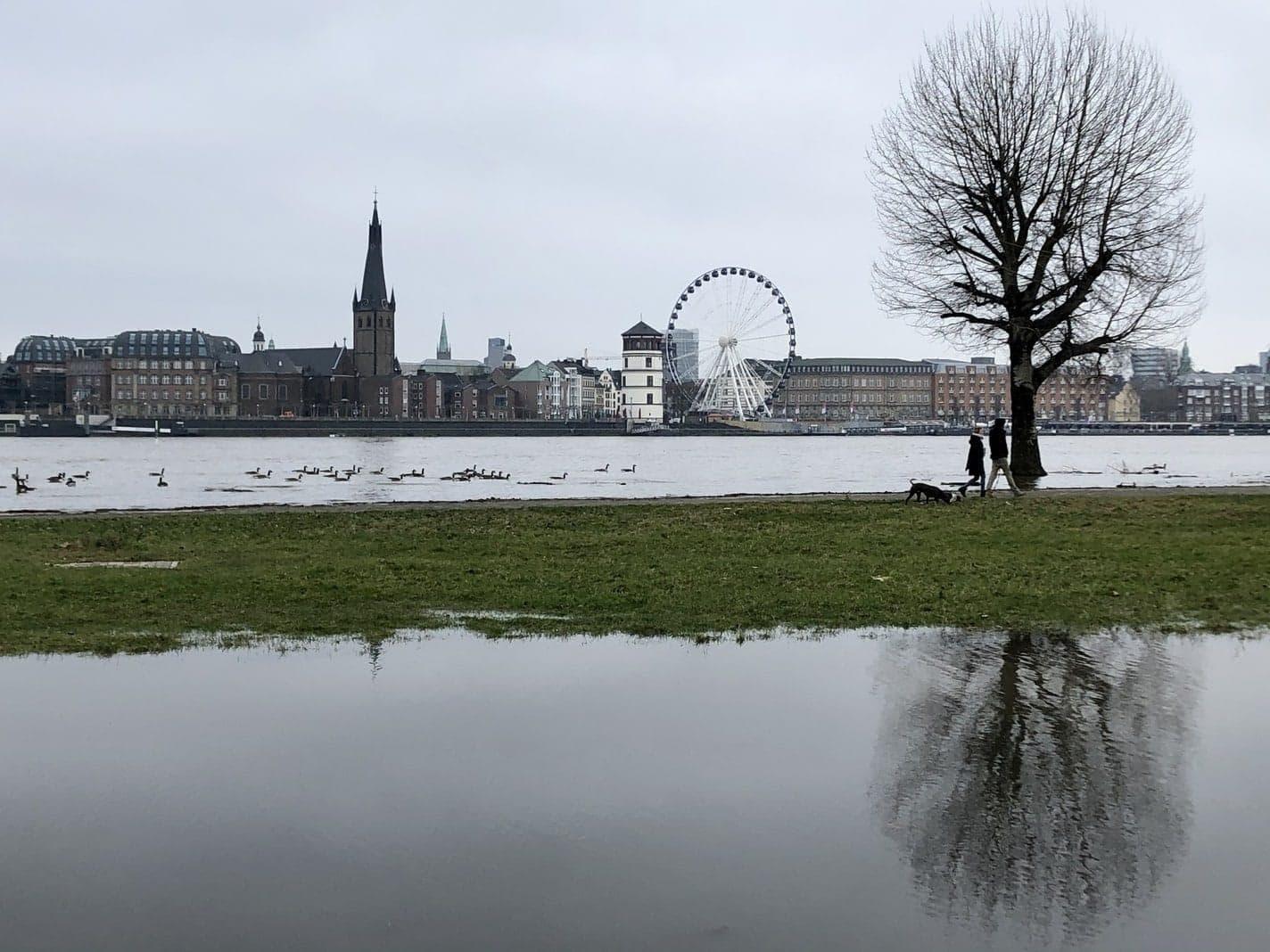 Rhein-Hochwasser in Düsseldorf
