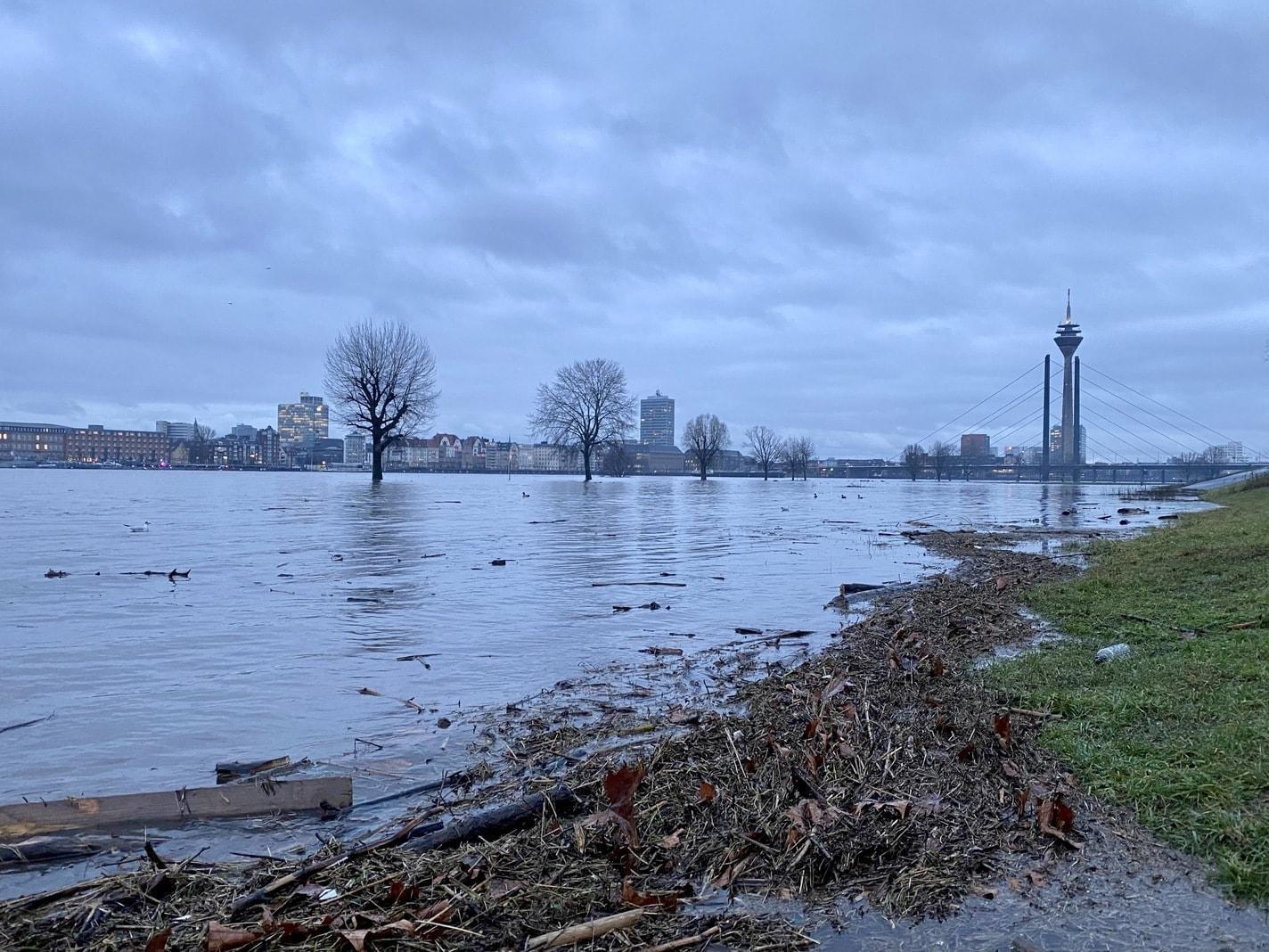 Rhein-Hochwasser in Düsseldorf-Oberkassel