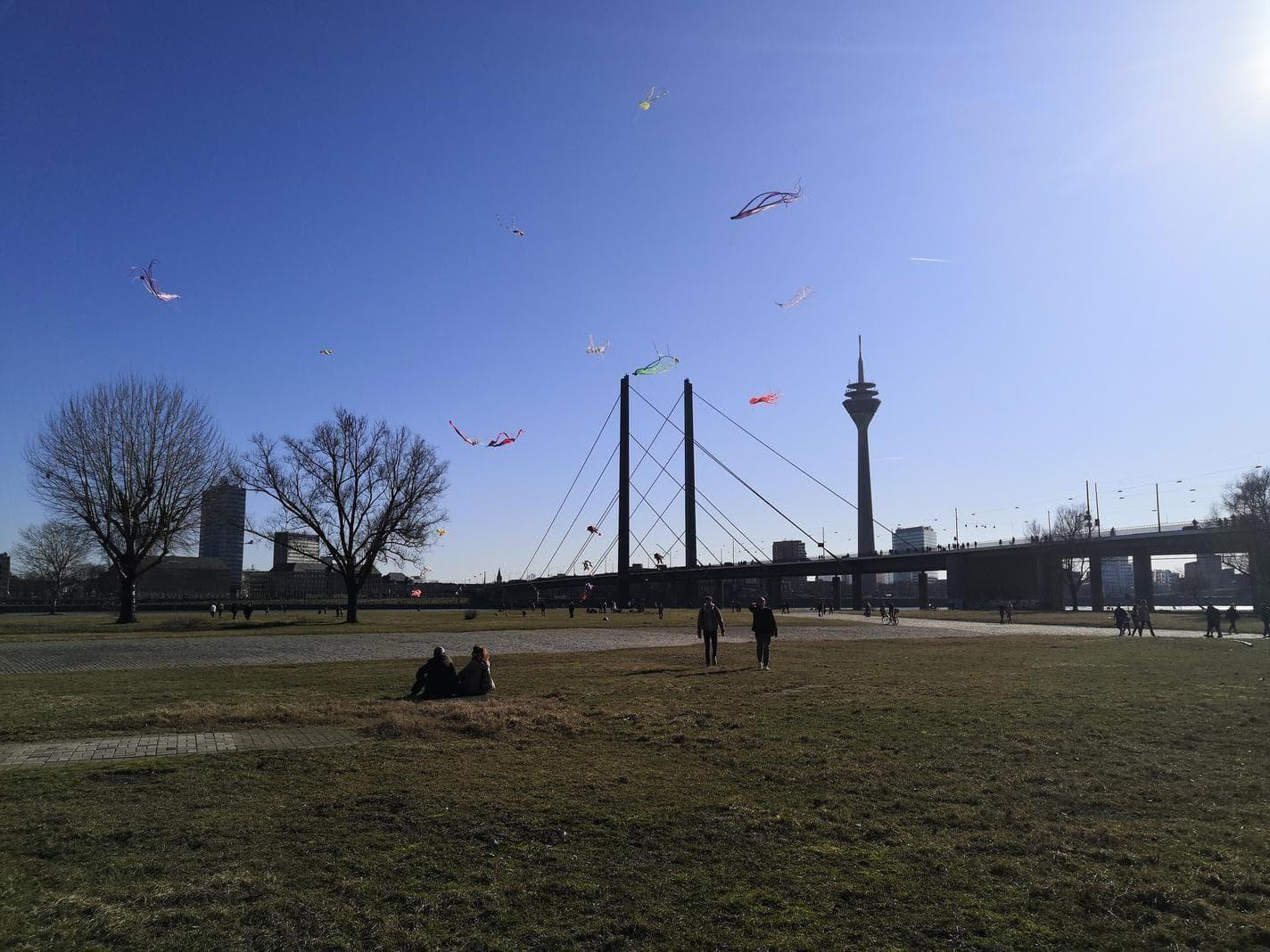 Düsseldorf Rheinwiesen Oberkassel