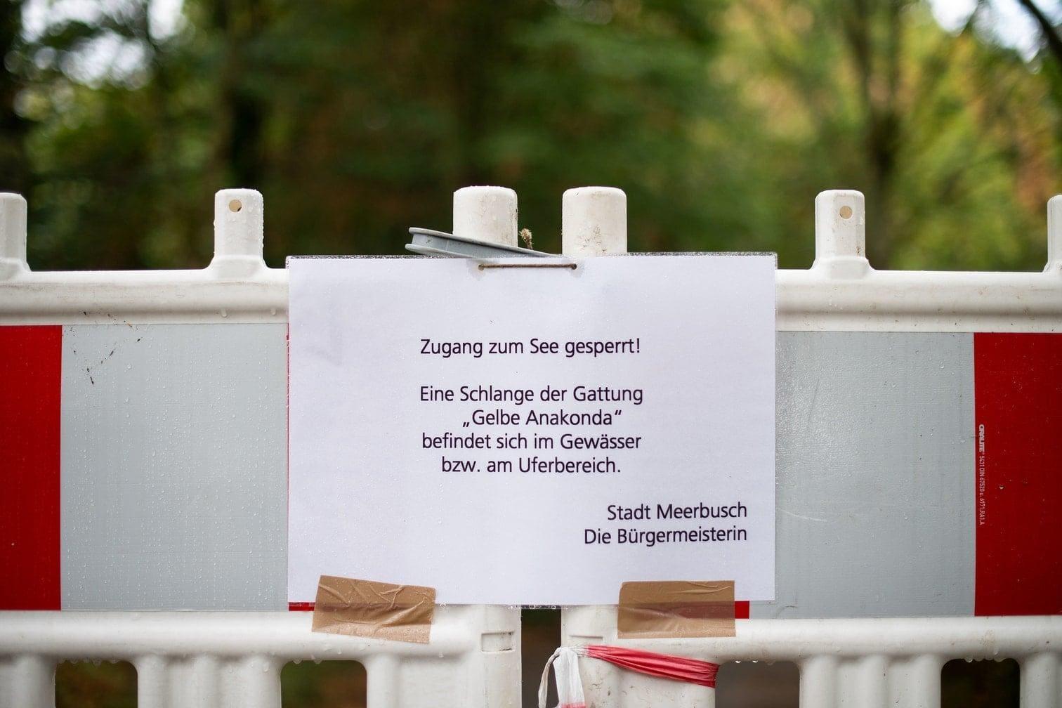 <p>Wegen einer zwei Meter langen Würgeschlange hat die Stadt Meerbusch bei Düsseldorf einen beliebten Ausflugssee gesperrt.</p> Foto: dpa