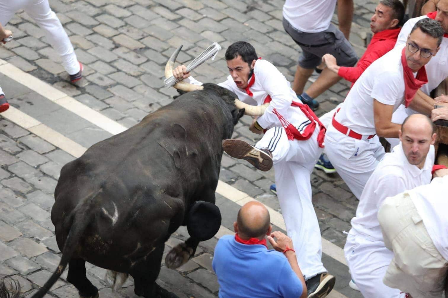 <p>Ausweichen nicht mehr möglich! Dieses Duell hat der Bulle für sich entschieden.</p> Foto: dpa