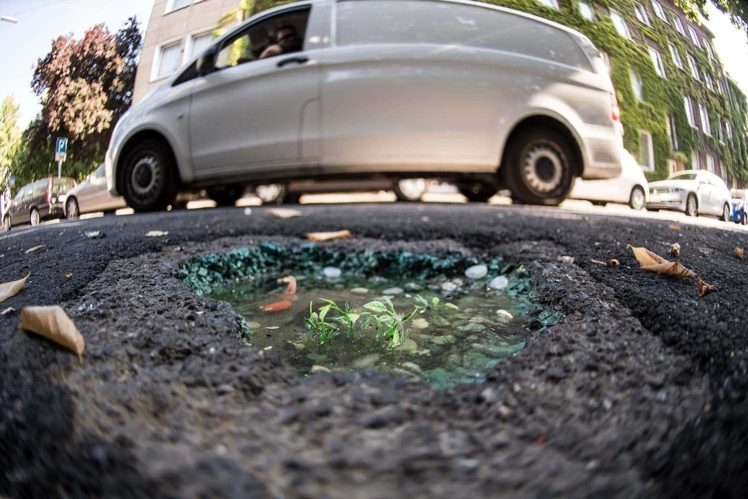 <p>So soll das Schlagloch für seine Fans dauerhaft zu sehen sein - und gleichzeitig für Autofahrer und Fußgänger keine Gefahr mehr darstellen.</p> Foto: dpa