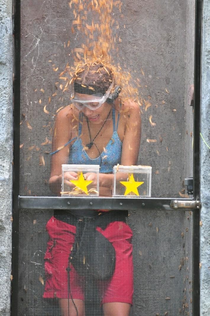 <p>In Plexiglasboxen befinden sich dort die Sterne. Um an die Sterne zu gelangen
