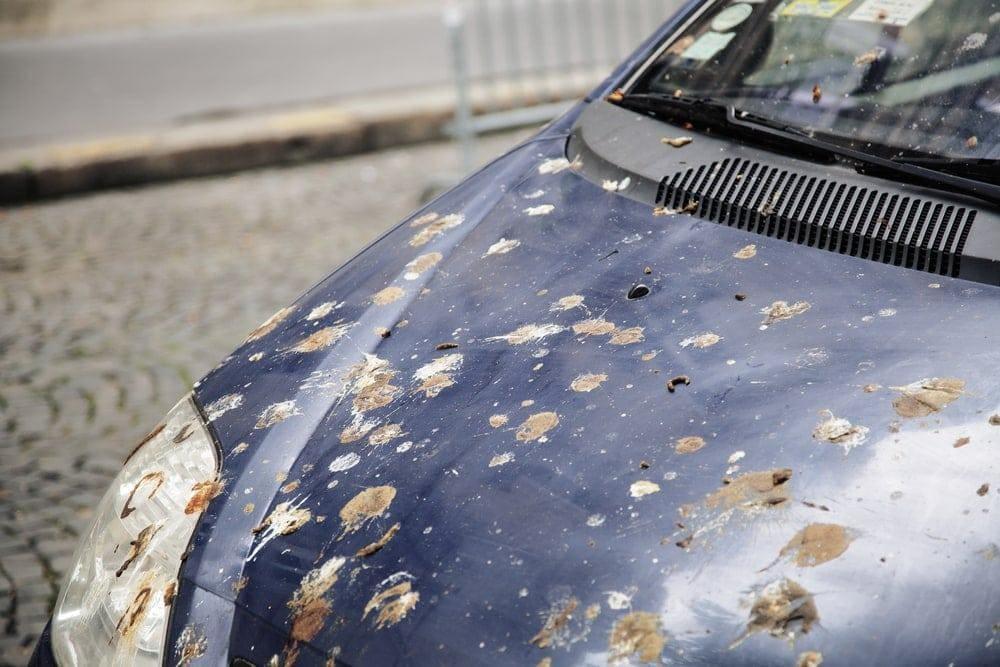 Foto: iordani/Shutterstock.com (Symbolbild)