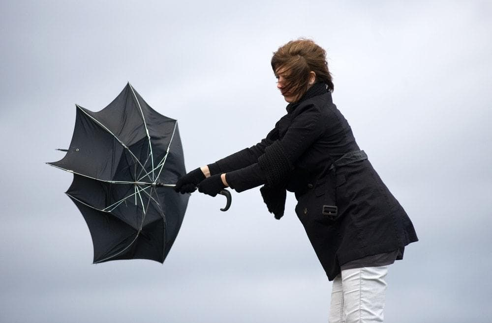 Foto: Robert Hoetink/Shutterstock.com (Symbolbild)