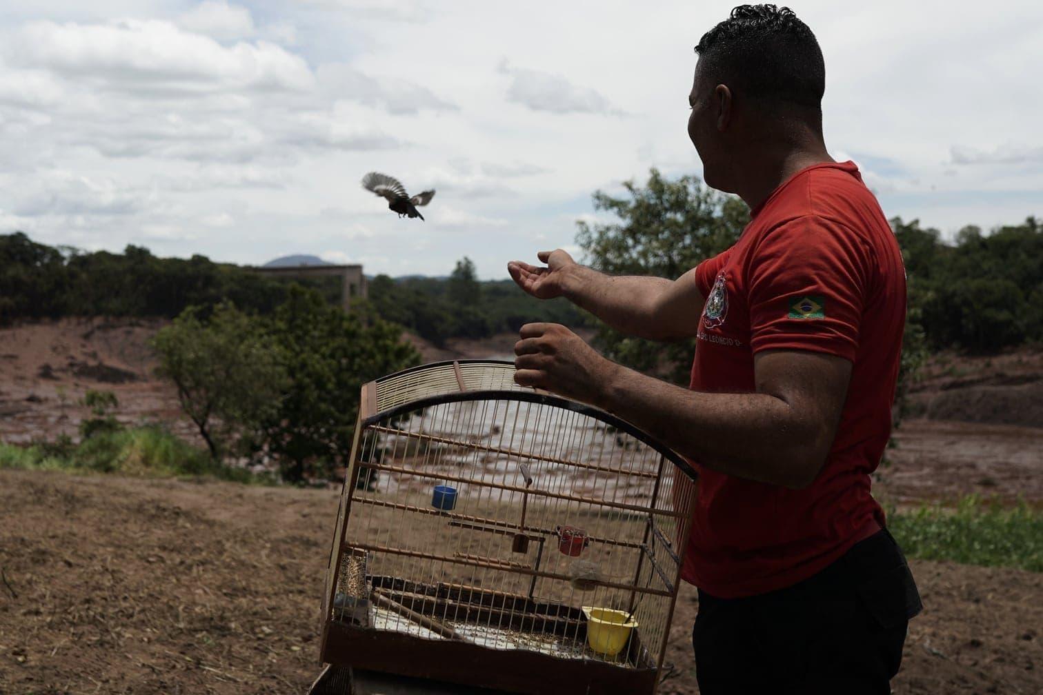 Überlebende zu finden - die Chancen gelten aber als gering und sinken mit jeder Stunde.</p> Foto: dpa/Leo Drumond