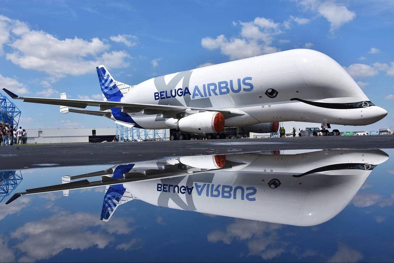 <p>Bis dahin soll der fliegende Weißwal nach Angaben von Airbus noch rund 600 Flugstunden zu Testzwecken absolvieren.</p> Foto: dpa