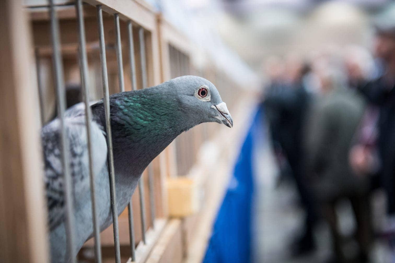 Foto: Bernd Thissen/dpa