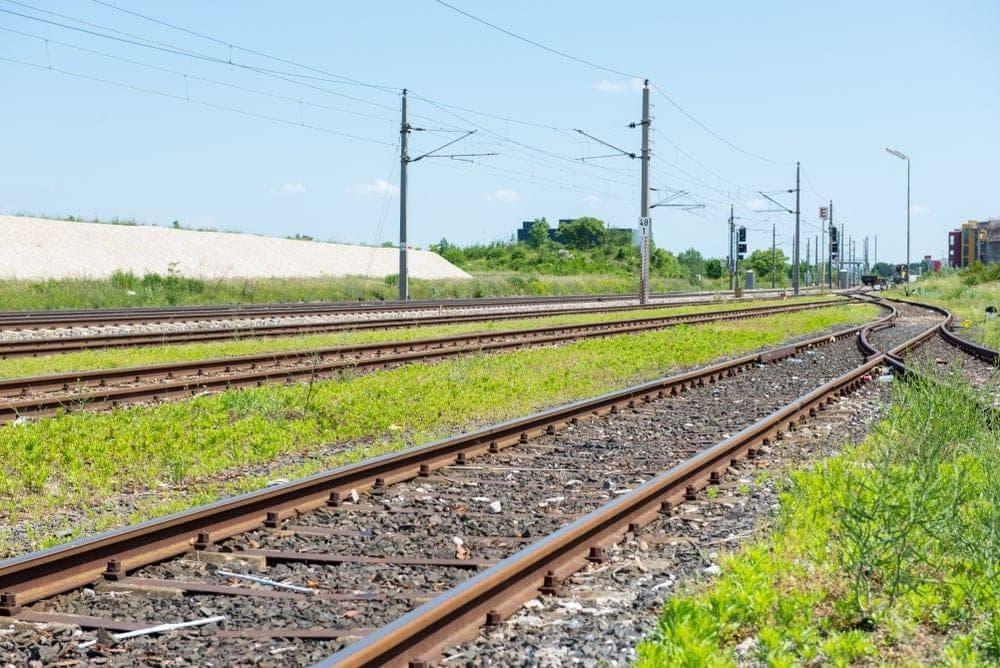 Foto: Christian Camus / Shutterstock.com (Symbolfoto)