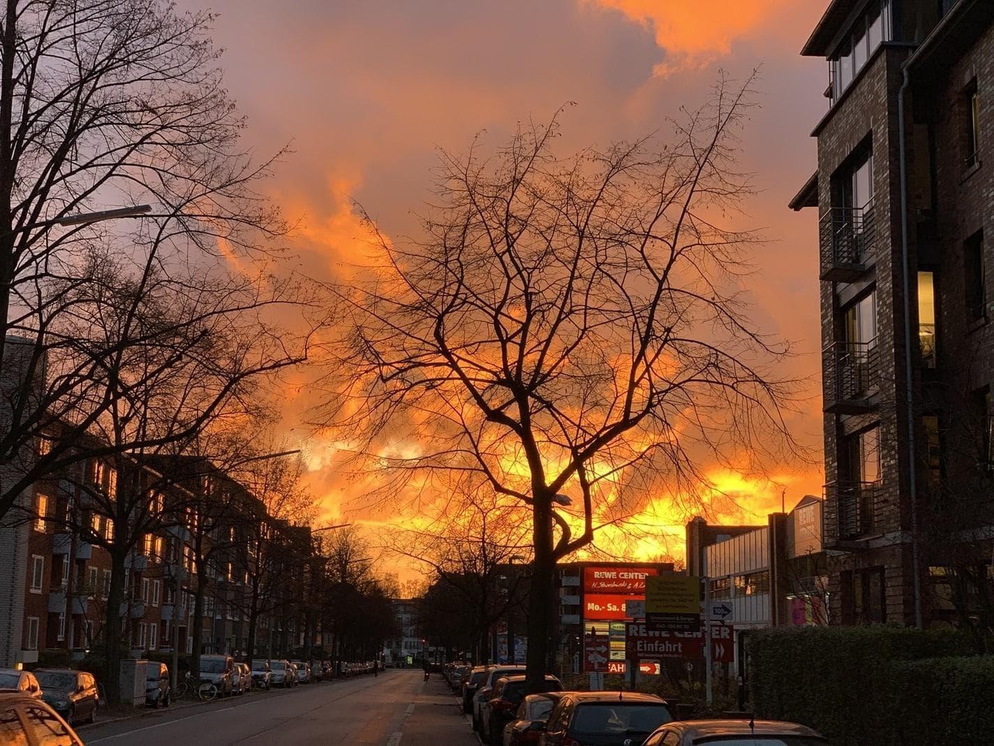 Atemberaubender Sonnenuntergang: Abendrot sieht aus wie Feuer – Mann ruft Feuerwehr