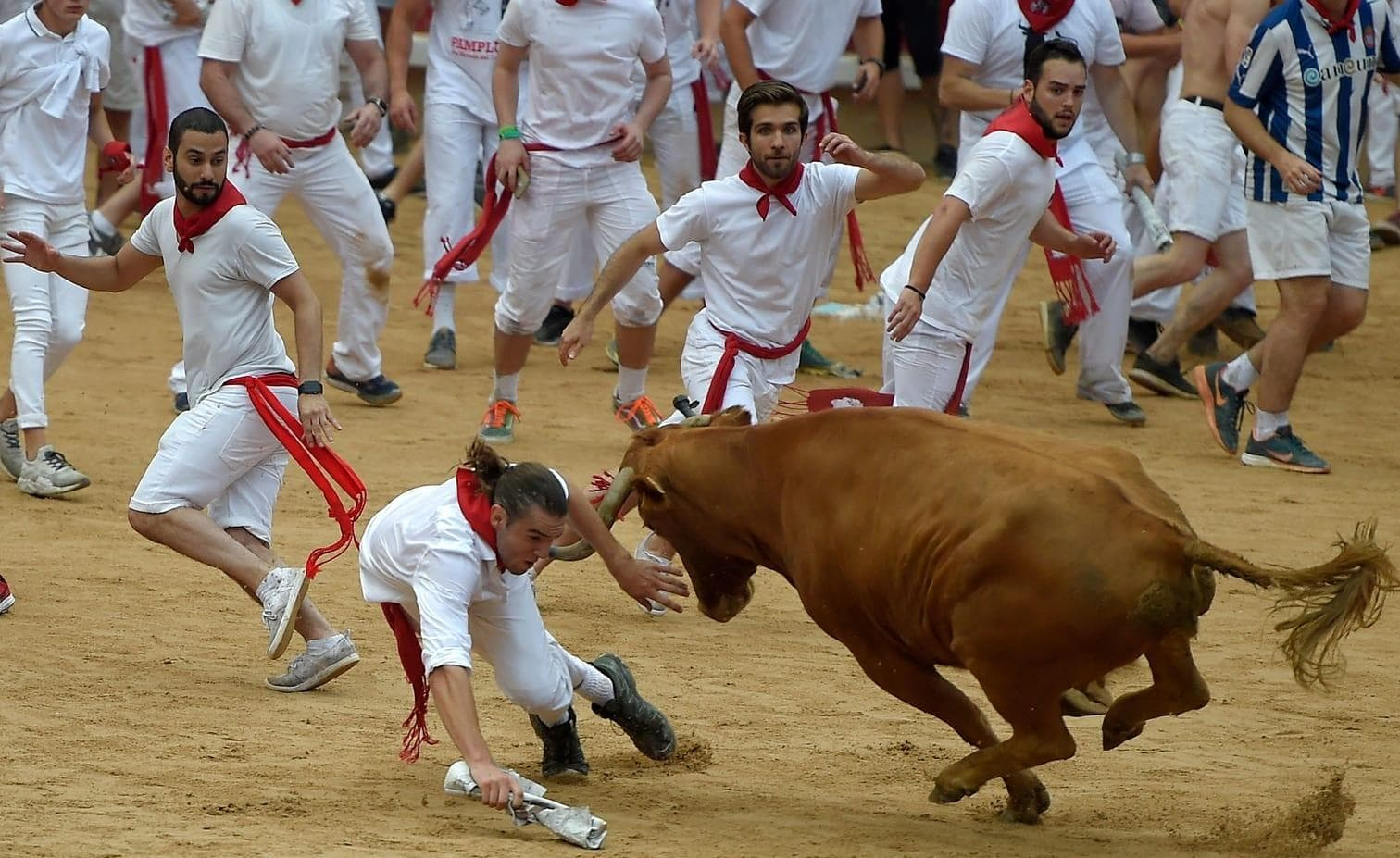 <p>In Pamplona heißt es wieder: &bdquo;Fiesta!&ldquo; Trotz zunehmender Kritik lockt die berühmte Stierhatz weiter Menschen aus aller Welt nach Nordspanien. Um mit den Kampfbullen durch die engen Gassen zu rennen