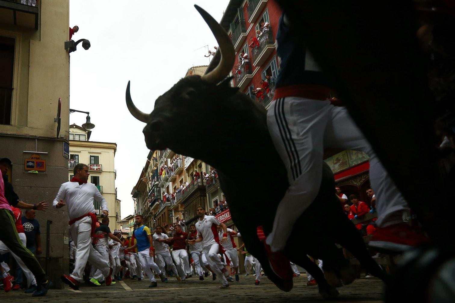 <p>Auch dieses Jahr protestierten Tierschutzgruppen gegen die traditionsreiche Veranstaltung