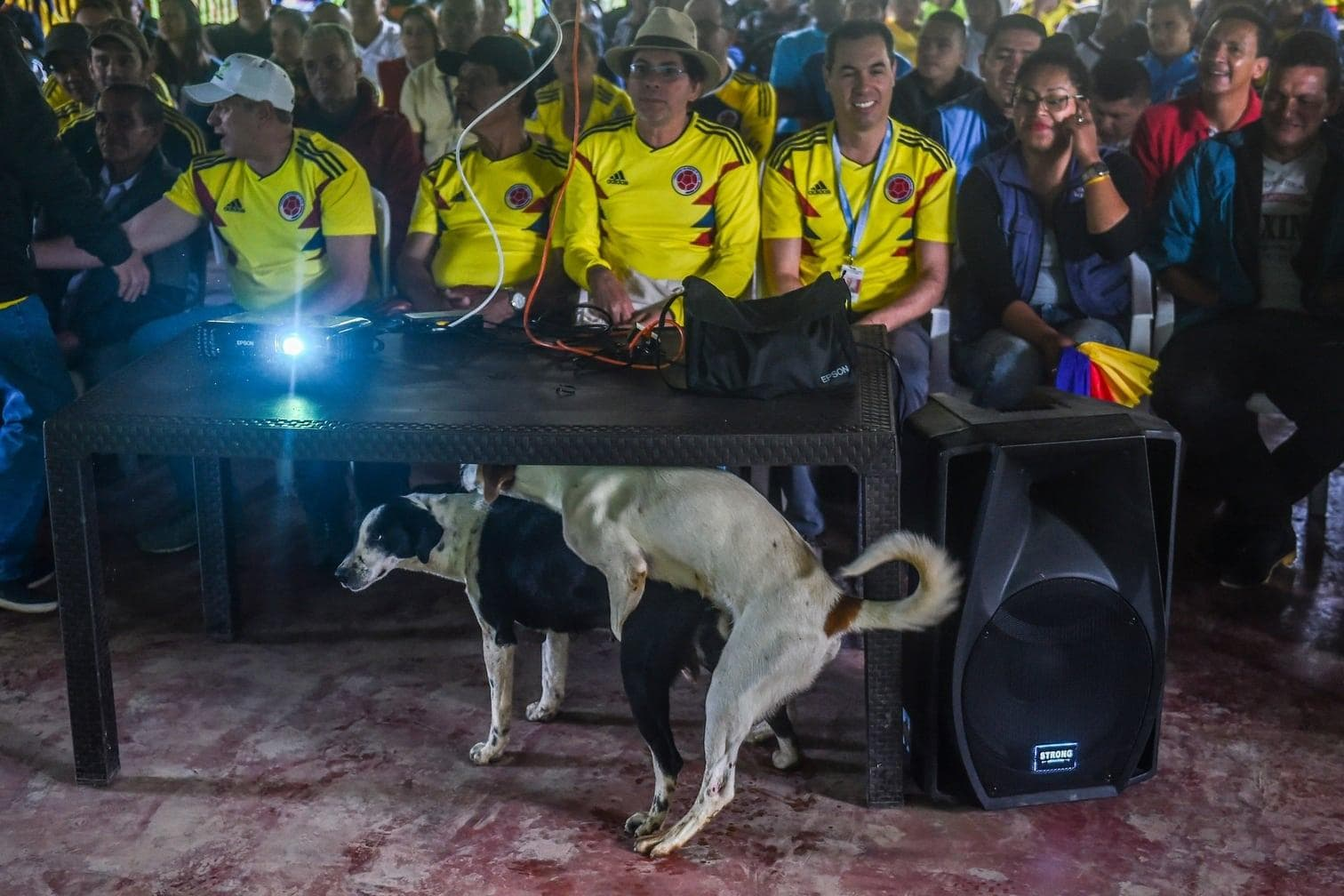 <p>Da war die Laune noch gut. Ein marokkanischer WM-Zuschauer knutscht mit seinem Kuscheltier.</p> Foto: dpa